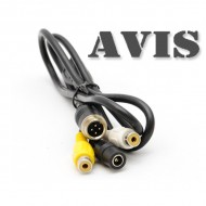 AVIS MALE - RCA FEMALE